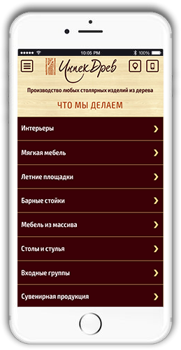 http://web4site.ru/wp-content/uploads/2018/06/roject-mobile-img-259x501.png