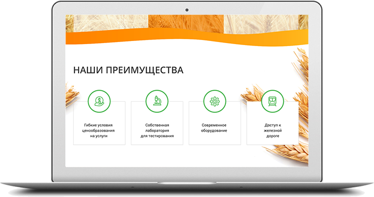 https://web4site.ru/wp-content/uploads/2018/06/project-desktop-img-5-737x389.png