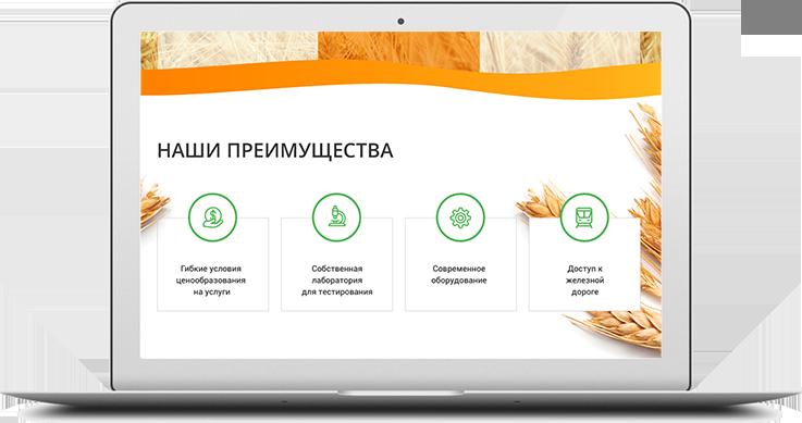 https://web4site.ru/wp-content/uploads/2018/06/project-desktop-img-5-737x389.png